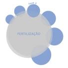 FIV Passo a Passo Fertilização